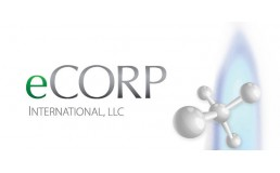 eCorp International LLC